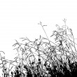 Meadow Grass Silhouette — 图库矢量图片