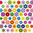Sixty fabulous flowers - Stock Vector