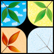 Leaves through the seasons — Stock Vector