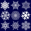 Nine More Fabulous Original Snowflakes — Stock Vector