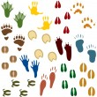 Fourteen Sets of Animal Tracks - Stockvectorbeeld
