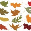 Wind blown fall leaves — Stock Vector