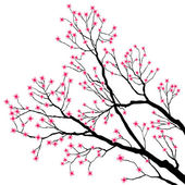 Tree Branches with Pink Flowers — Stock Vector