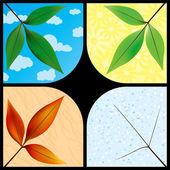 Leaves through the seasons — Stock Vector