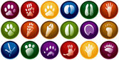 Animal tracks buttons — Stock Vector