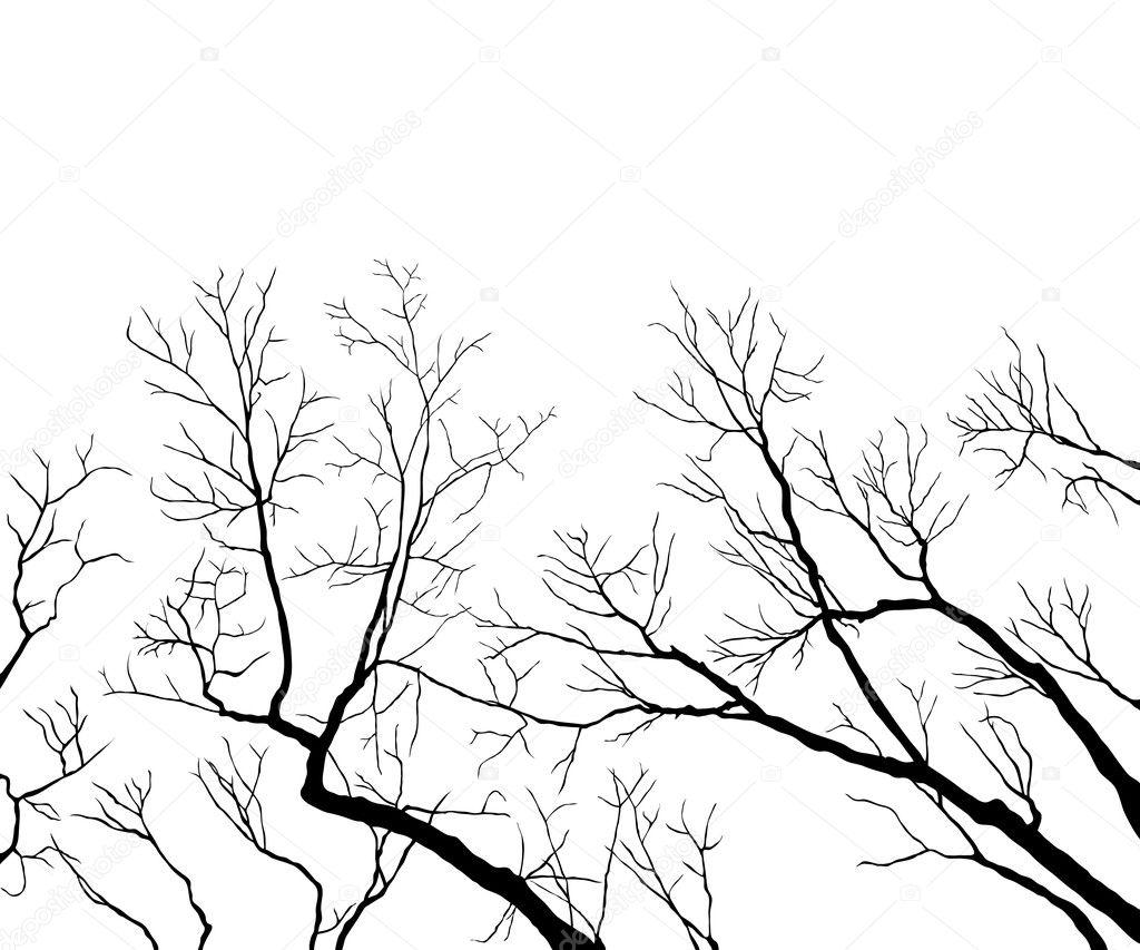 光秃的树枝 — 图库矢量图像08
