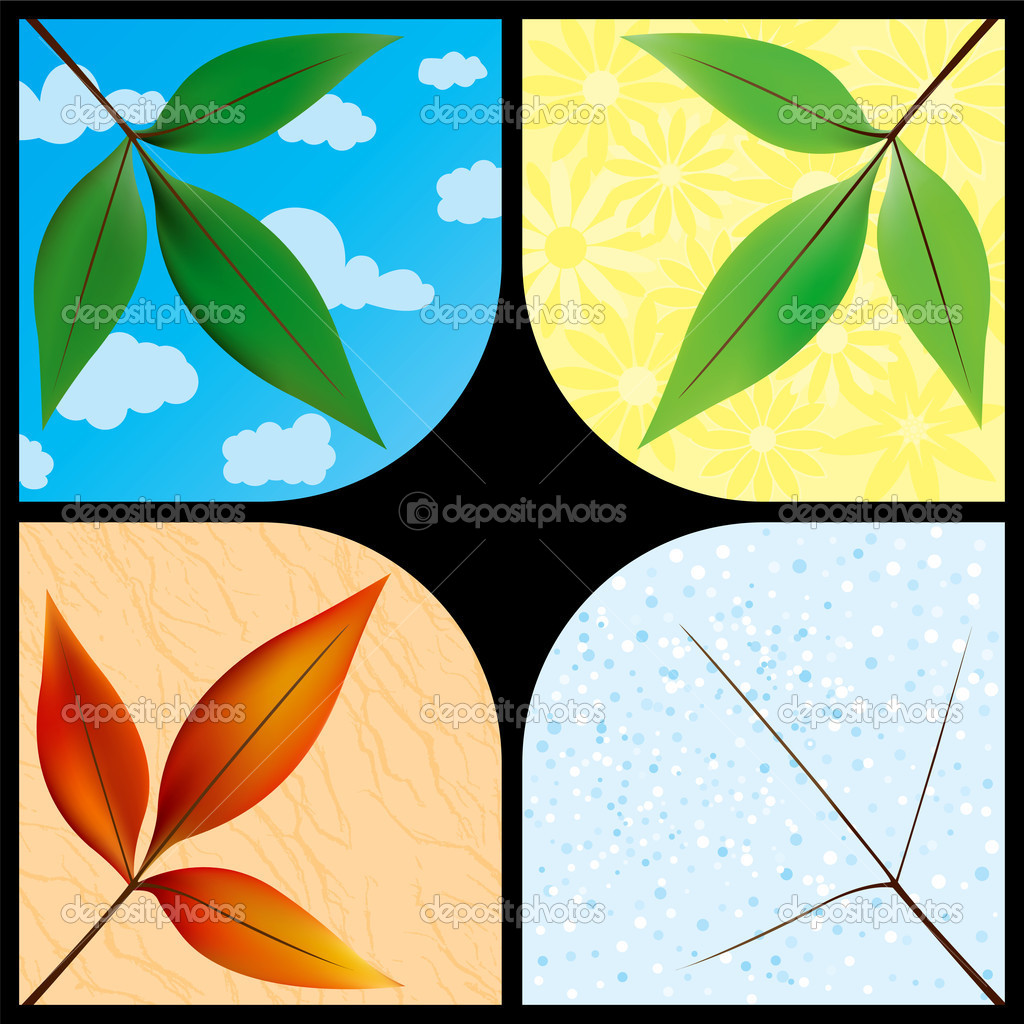 Leaves through the seasons — Stock Vector #8996488