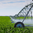 Stock Photo: Irrigation Pivot