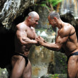 Foto Stock: Two bodybuilders push each other