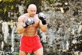 手袋で強力な若いボクサー — ストック写真