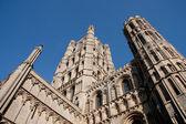 Ely catedral, cambridge, inglaterra — Foto Stock