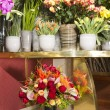beautiful colorful flowers in flower shop — Stock Photo