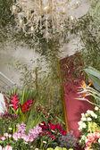 Interior de la tienda de flores exóticas con araña de cristal preciosa — Foto de Stock
