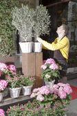 Fleuriste arrangement de fleurs fraîches — Photo