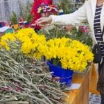 Picking flowers on market — Stock Photo #9812207