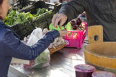Pagando per la verdura fresca — Foto Stock