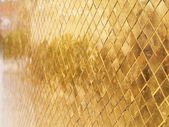 Gold Precious Texture — Stock Photo
