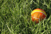 Little orange ball in the grass — Stock Photo