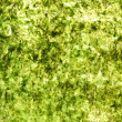 Green dry nori background — Stock Photo