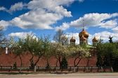 Russia Tula kremlin — Stock Photo