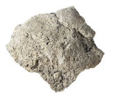 Fósil — Foto de Stock