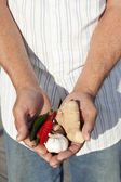 Farmer holding spices. — Stock Photo