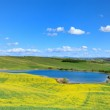 Tuscany, Crete Senesi landscape, Italy. Small lake green yellow — Stock Photo #10190471