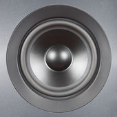 Audio System. Silver speaker close up. — Stock Photo