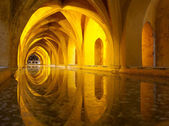 Alcazar queen's bath, Seville, Andalusia, Spain — Foto Stock