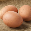 Eggs on sacking — Stock Photo #9032841