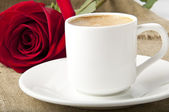 Cup of coffee and rose — Stock fotografie