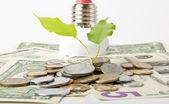 Energiebesparende lamp — Stockfoto