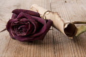 Dried roses and an old roll of the old table — Stock Photo