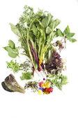Salad igredients — Stock Photo