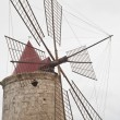 Old windmill on the salines of Trapani — Stock Photo