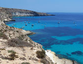Boats on the island of rabbits- Lampedusa, Sicily — Stock Photo