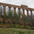 Greek temple of Agrigento — Stok fotoğraf