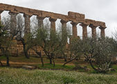 Greek temple of Agrigento — Stock Photo