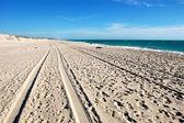 Car track on white sand beach — Stock Photo