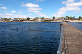 Town pier — Stock Photo