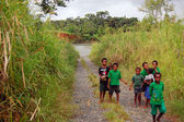 Papuan kids on the road — Stock Photo