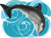 Dolphin vector illustration — Stock Vector