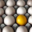 Close up of golden egg in cardboard container — Stockfoto