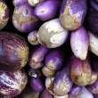 Ripe eggplant - Stock Photo