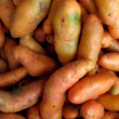 Stock Photo: Olluquito. Peruvian tuber
