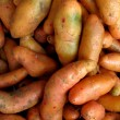 Olluquito. Peruvian tuber — Stock Photo #9865709