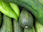 Verse dienbladen van courgettes en komkommer — Stockfoto