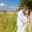 Bride and groom huggling at green field — Stock Photo #9311060