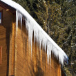 Icicles — Stock Photo #9177859