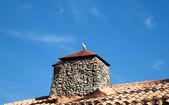 Holub na střeše — Stock fotografie
